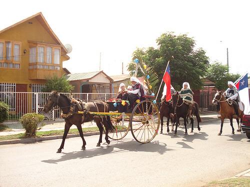 Quasimodo carriage