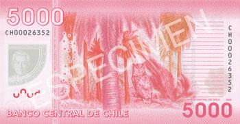 5000 pesos chilenos reverso